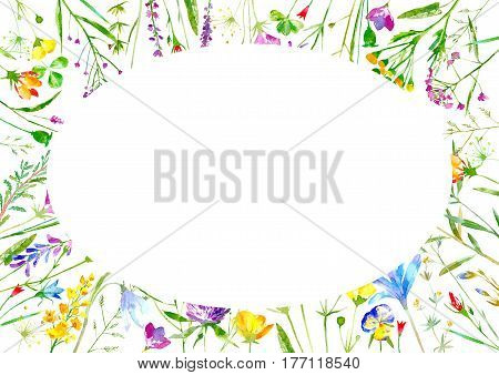 Floral oval frame of a wild flowers and herbs on a white background.Buttercup,cornflower,clover,bluebell,forget-me-not,vetch,timothy grass,lobelia,snowdrop flowers.Watercolor hand drawn illustration.