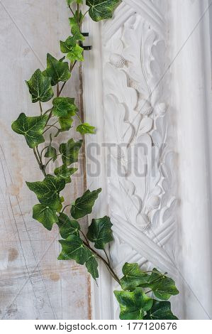 White art stucco gypsum wall with a grean loach branch on it.