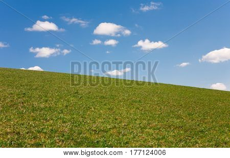 Simple landscape with a grass field and a cloudy sky. Half of image is sky another half is field.