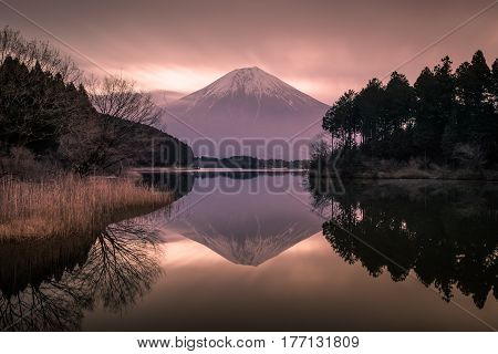 Mountain Fuji and Lake Tanumi with beautiful sunrise in winter season. Lake Tanuki is a lake near Mount Fuji Japan. It is located in Fujinomiya Shizuoka Prefecture and is part of the Fuji-Hakone-Izu National Park.
