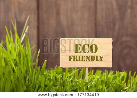 Signboard ECO on Grass background of wood planks, Fresh green lawn near rustic grunge fence