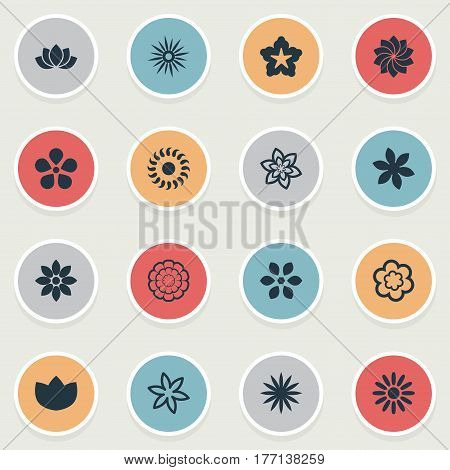 Vector Illustration Set Of Simple Flower Icons. Elements Bloom, Pattern, Saffron And Other Synonyms Gerberas, Bay And Pattern.