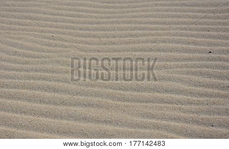 Seamless sand background. Beautiful sand background. Sand Texture background. Closeup of sand.