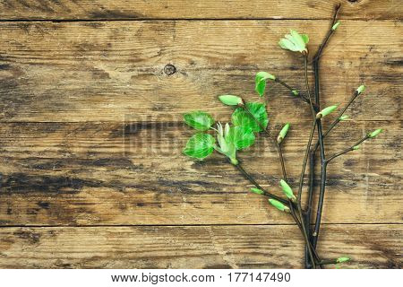 Bouquet of young spring branches with leaves on an old wooden table retro style