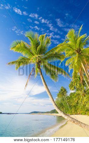 Green Getaway Idyllic Island
