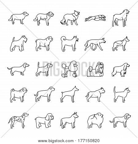 25 Dog outlines vector icons collection set