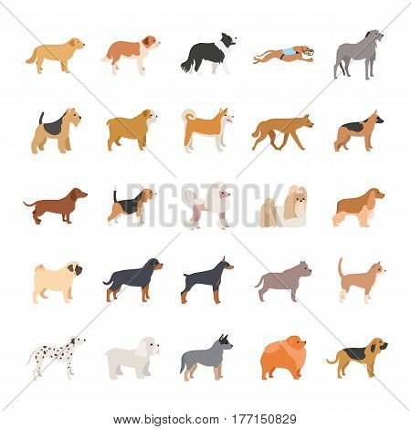 25 Dogs color vector icons collection set