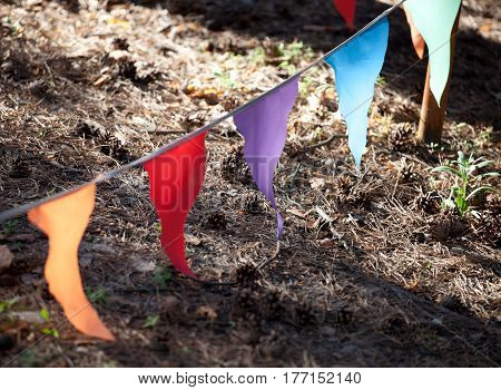 a string of multicolored small triangular flags in the wind outdoor