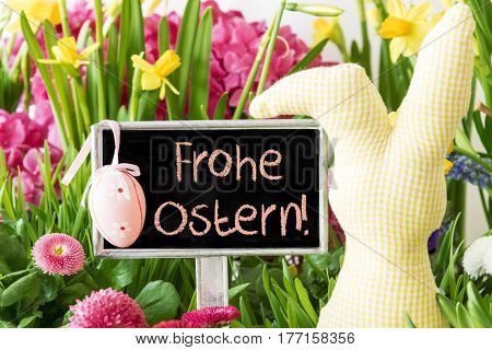 Sign With German Text Frohe Ostern Means Happy Easter. Colorful Spring Flowers Like Narcissus. Easter Bunny And Easter Egg As Decoration. Card For Seasons Greetings