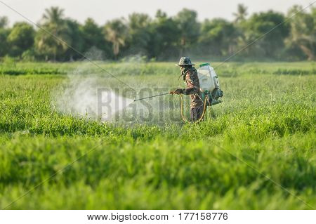 farmer spraying pesticide , farmer in thailand .