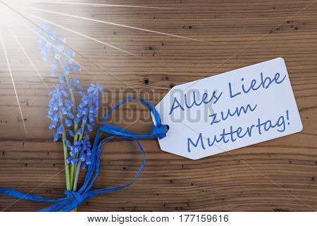 Label With German Text Alles Liebe Zum Muttertag Means Happy Mothers Day. Sunny Blue Spring Grape Hyacinth With Ribbon. Aged, Rustic Wodden Background. Greeting Card For Spring Season