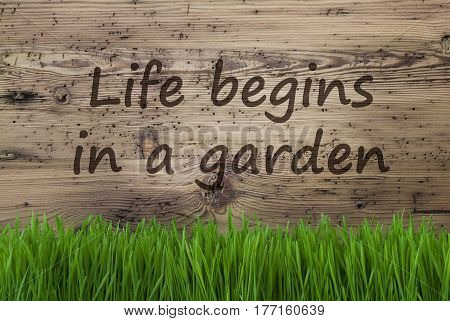 English Quote Life Begins In A Garden. Spring Season Greeting Card. Aged Wooden Background With Gras.