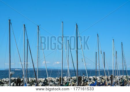 Sailing boats masts at mooring line on Pacific ocean harbor