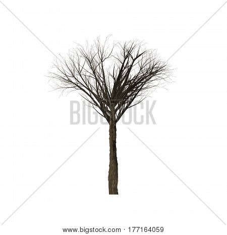 Dead trees of computer graphics in create isolated on white background.