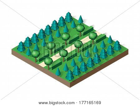 Isometric view projection summer landscape. Nature appearance of park with trees. Stock vector.