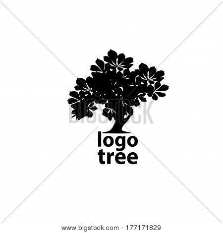 Tree logo concept vector illustration. Tree silhouette.