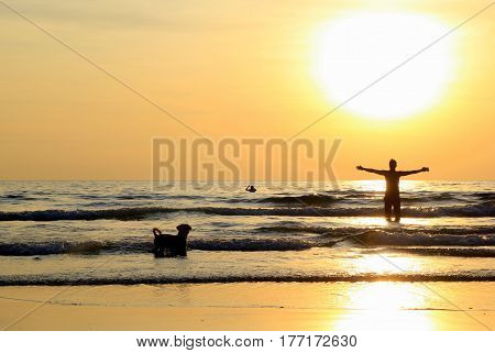 Travel to island Koh Chang, Thailand. A man with a dog are walking on the sunset beach.