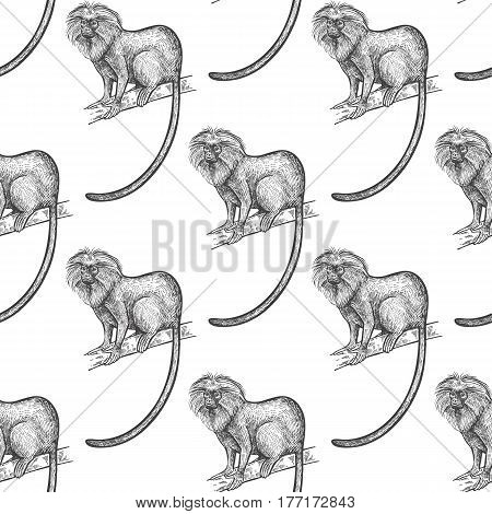 Lion tamarin. Seamless pattern with animals South America. Hand drawing of wildlife. Vector illustration art. Black and white. Old engraving. Vintage. Design for fabrics paper textiles fashion.