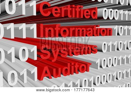 Certified Information Systems Auditor in the form of binary code, 3D illustration