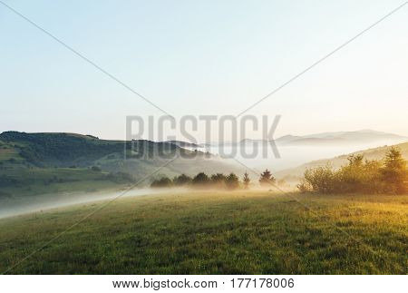 Rolling countryside around a farm in the morning light. Wonderful day and gorgeous scene. Location place Carpathian, Ukraine, Europe. Perfect vacation outdoors. Explore the world's beauty.