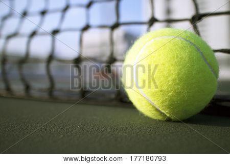 Tennis ball on the tennis hard court