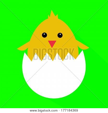 Cute yellow cartoon baby chicken vector illustration