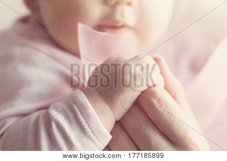 Little Cute Baby Hands in Mother Hand. Pink Background.