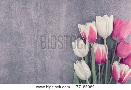 Frame Of Tulips Onstone Background With Copy Space For Message. Spring Flowers. Greeting Card For Va
