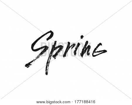 Spring. Handwritten lettering. Modern Calligraphy Vector illustration