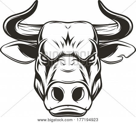 Vectorial illustration, head healthy ferocious bull on a white background