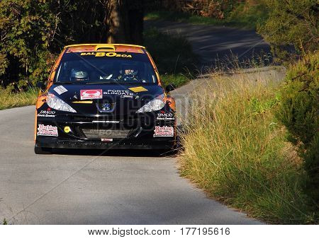 Acquasanta Italy - November 01 2016 - Rally of the Valli Genovesi: The 207 Super 2000 of 'crew Bruno-Fontanone during the race.