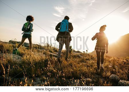 Three young friends on a country walk. Group of people hiking through countryside on summer day.