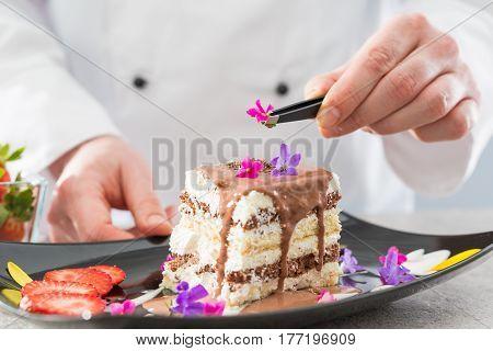 chef chocolate pastry dessert flower plate fine garnish icing making
