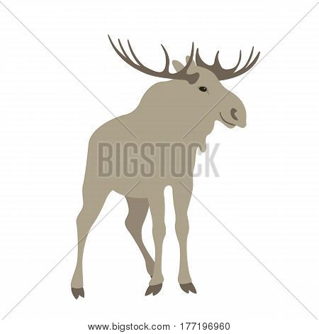 moose  vector illustration style Flat side front