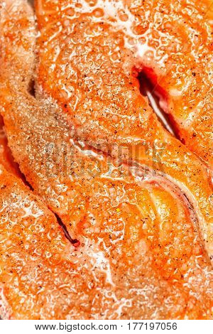 Salting red fish marco shot textured background