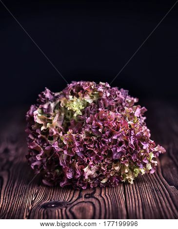 Fresh Red Leaf Lettuce Salad On Old Rustic Wooden Table Background, Dark Toned Style, Copy Space, Co