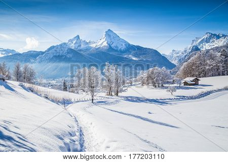 Winter Wonderland With Trail In The Alps