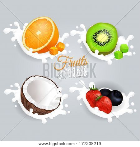 Fruit and milk set concept on light grey background. Halves of orange fruit, green kiwi, brown coconut, whole red strawberries and blueberries splashing in white milk. Vector poster of fresh fruit