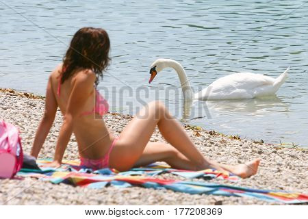 Woman Sunbathing Near Swan Lake