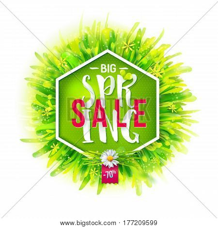 Big spring sale label with green grass and chamomile. Geometric label with realistic nature background. Promotion banner. May used as banner, poster, flyer. Vector illustration