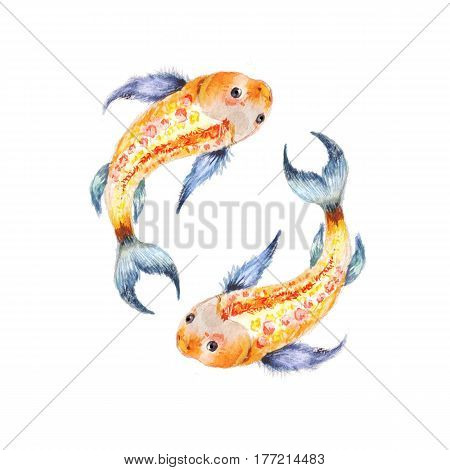 Koi fish. Yin Yang symbol. Watercolor illusration isolated on white. Two fish theme love