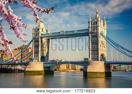 Tower bridge at spring, London