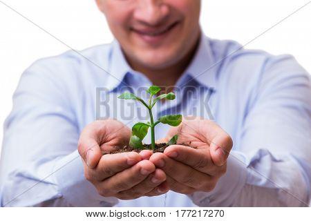 Man holding green seedling isolated on white