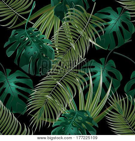 Jungle thickets of tropical palm leaves. Seamless floral pattern. Isolated on a black background. Vector illustration