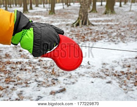 Hand in glove keeps red retractable tape dog lead with tense cord in winter park