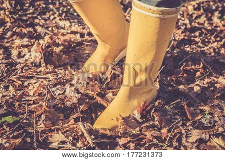 Yellow boots walk in the dead leaves