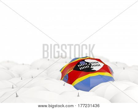 Umbrella With Flag Of Swaziland