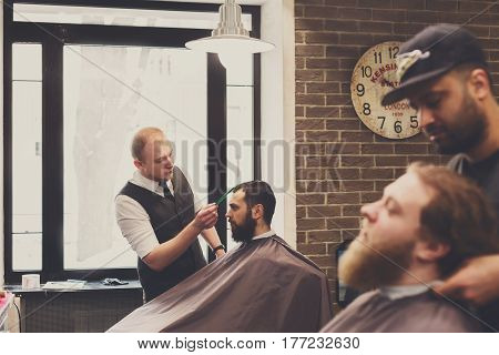 Barbers work in barbershop with beards of clients. Making modern hairstyle in male hair salon