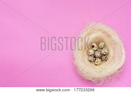 Few Quail Eggs In A Nest On A Pink Background.