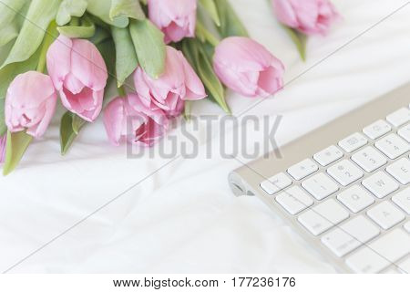 Pink tulips bouquet on white bed background
